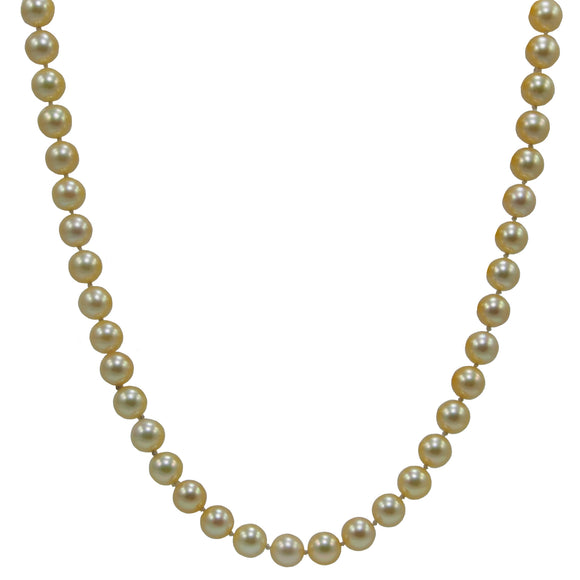 A long, continuous, single row of cultured pearls