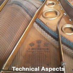 Bechstein Technical Aspects