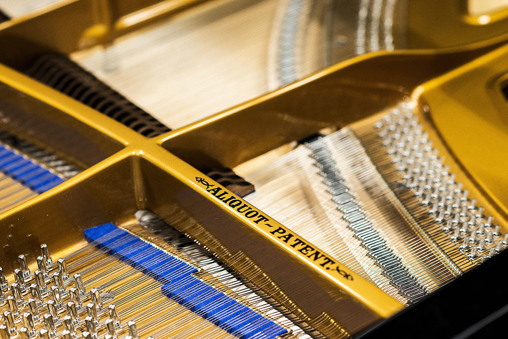 Bluthner Pianos String