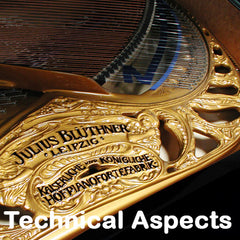 Bluthner Pianos Technical Aspects