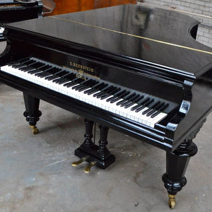 Bechstein V Ebonised Finish