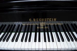 Bechstein V Ebonised Finish Keys