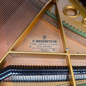 Bechstein S baby Grand Piano inside