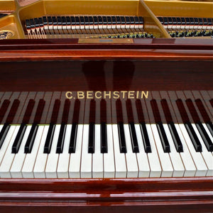 Bechstein S baby Grand Piano Keys