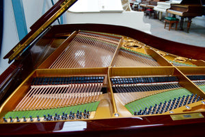 Bechstein Grand Piano Internal Design