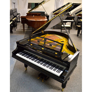 Feurich Restored Grand Piano