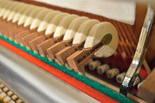 Load image into Gallery viewer, Niendorf 123 Upright Piano Hammers