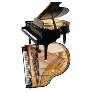 Steingraeber & Sohne A-170 Salon Grand Piano