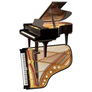 Steingraeber & Sohne B-192 Salon Grand Piano