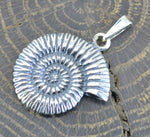 AMMONITE | Sterling Silver Pendant-Esoterico Shop-Esoterico Shop