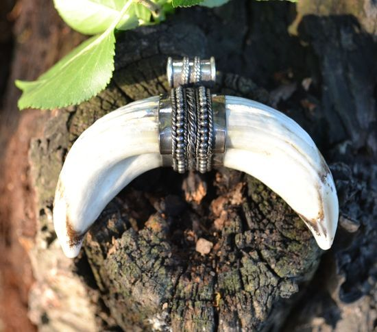 BOAR TUSK | Carpathian Wild Boars Necklace Pendant-Esoterico Shop-Esoterico Shop