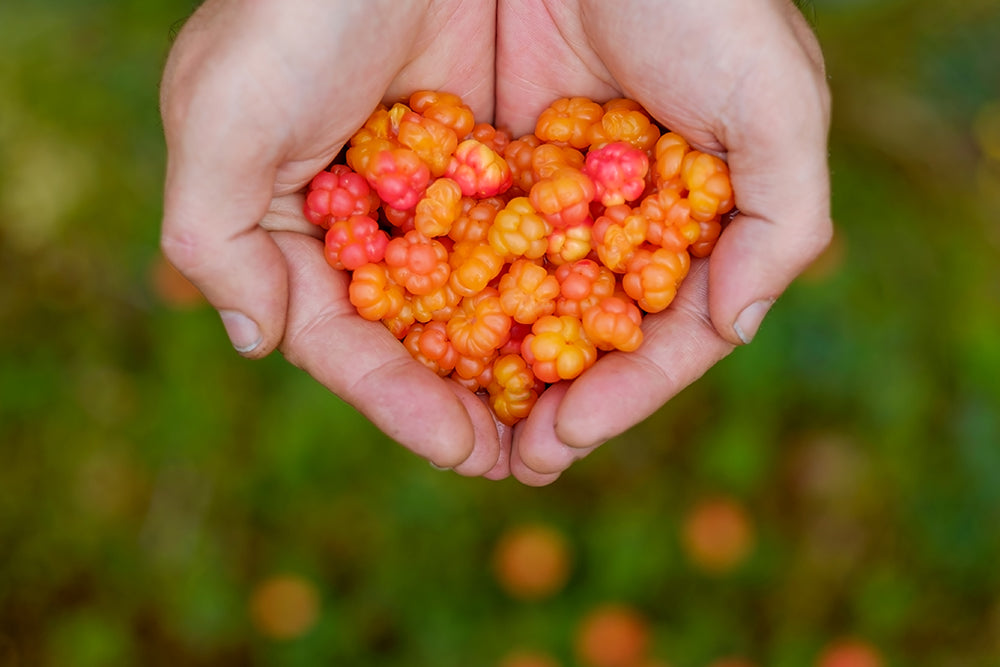 Cloudberries are rich in vitamins C and E.