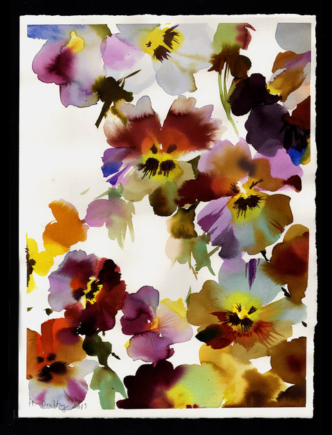 Pansy Blooms I