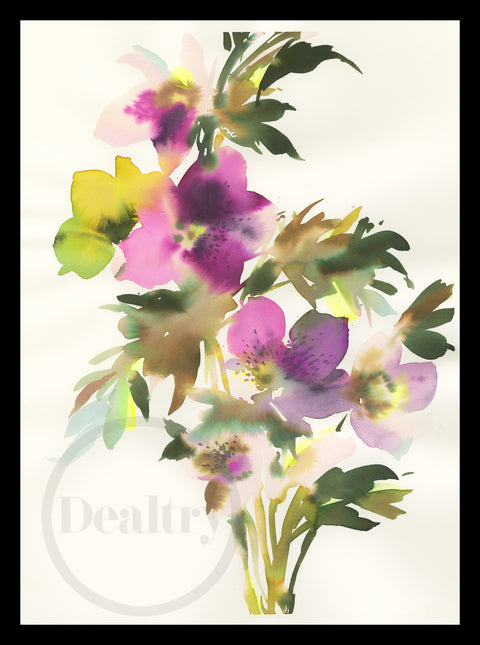 Hellebore magic