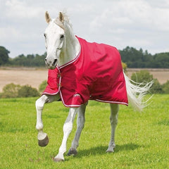 Tempest Original Air Motion Turnout Rug