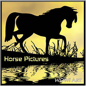 Collection of Horse Pictures