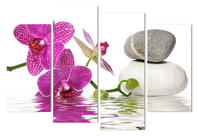 Zen Orchids Stones 4 Panel Canvas Wall Art