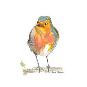 A Robin Original Watercolor by Susan Erwin Prowse