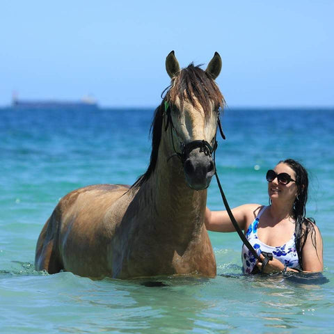 Bec and her homebred Lusitano stallion (now owned by K. Mcleod)