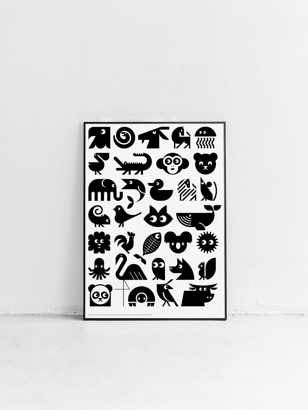 Animal Overview Poster