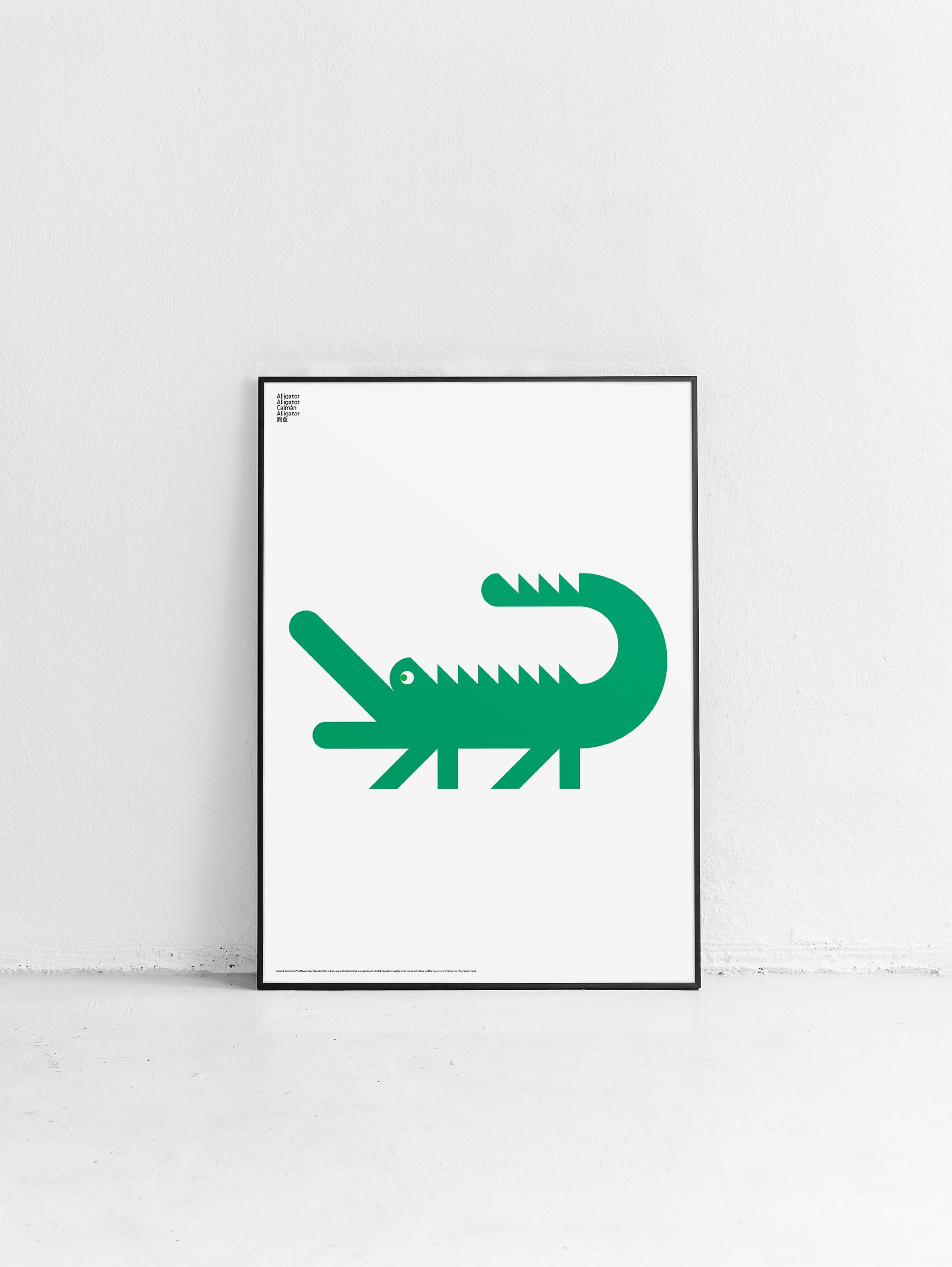 Animal Alligator Poster