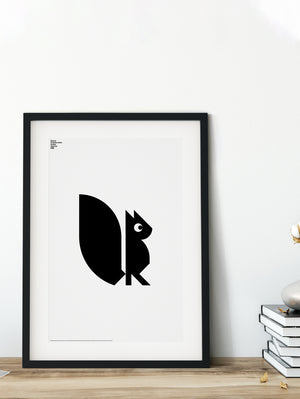 Animal Squirrel Poster