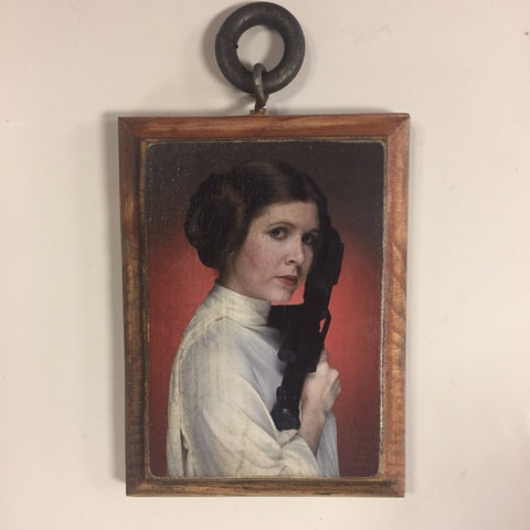Princess Leia tribute plaque