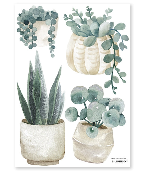 Sticker A3 (29,7x42cm) - PLANTS & JARS