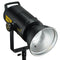 Godox FV200 200W High Speed Sync Flash and Continuous LED Light