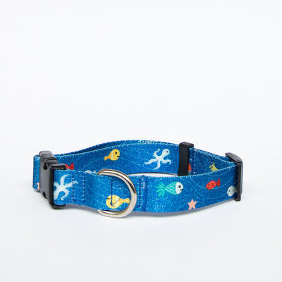 Great Barrier Reef Collar