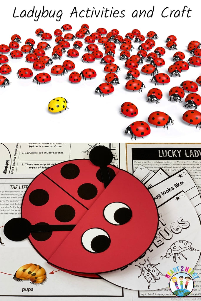 Ladybugs are Amazing Little Critters That Help Our Planet