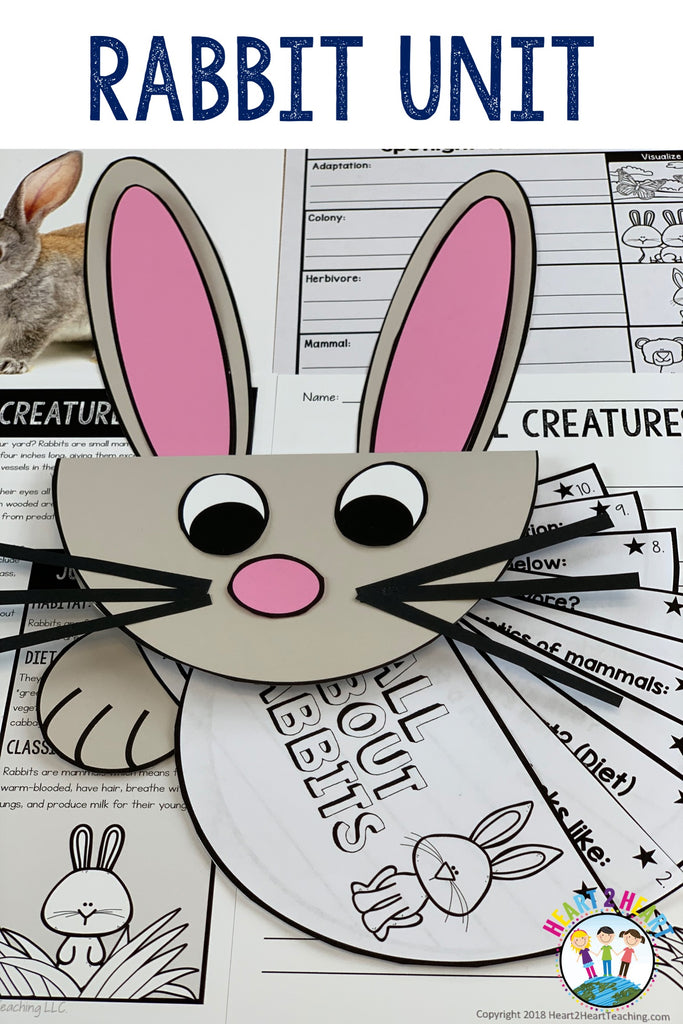Easy Easter Bunny Craft Project for Kids