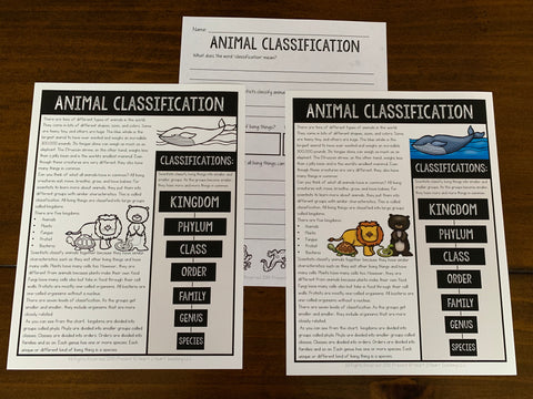 Animal Classification Unit for Kids