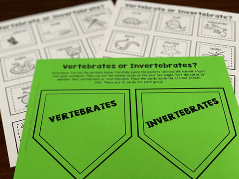 Vertebrates and invertebrates activities for kids