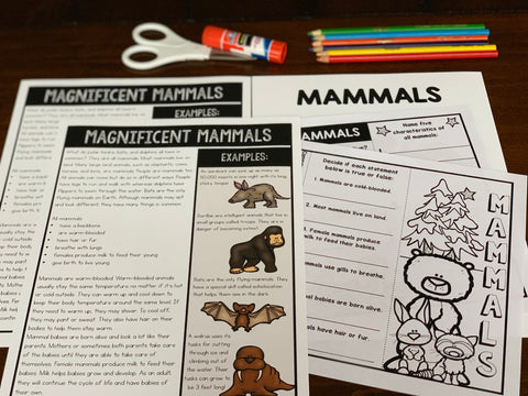 Mammals activities for kids