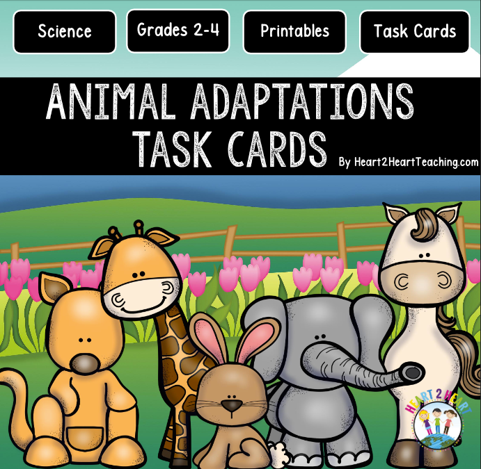 Animal Adaptions Task Cards