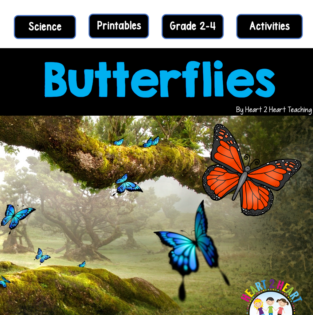 The Life Cycle of a Butterfly Activity Pack