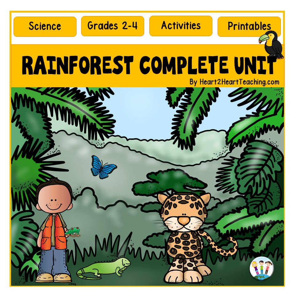 All About the Rainforest Unit