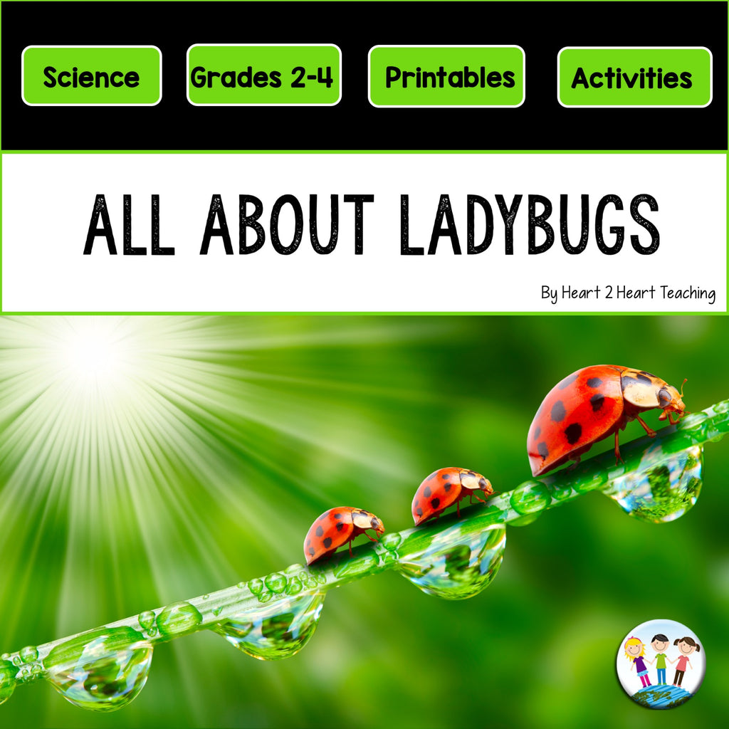 All About Ladybugs Craft and Activity Pack