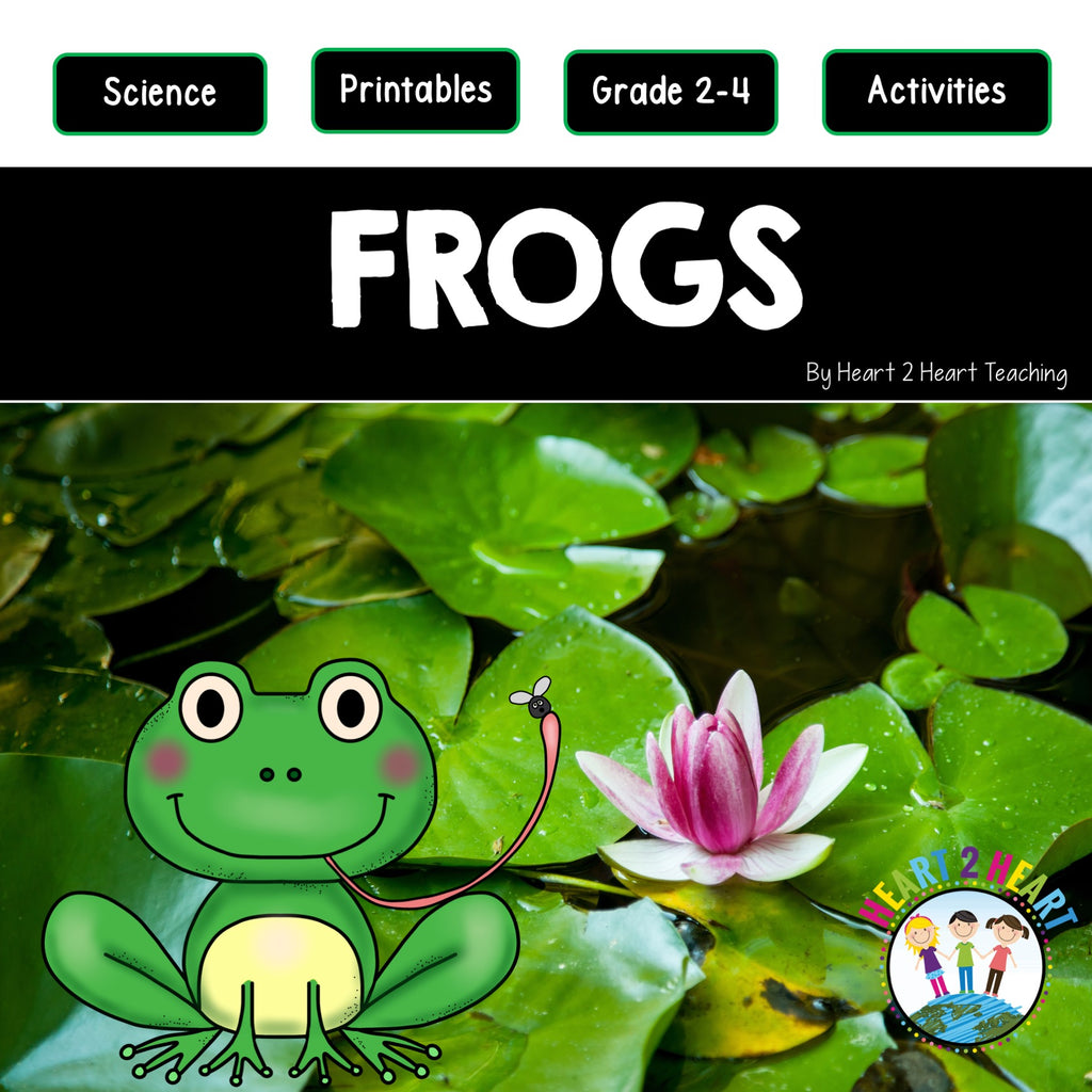 Let's Learn All About Frogs
