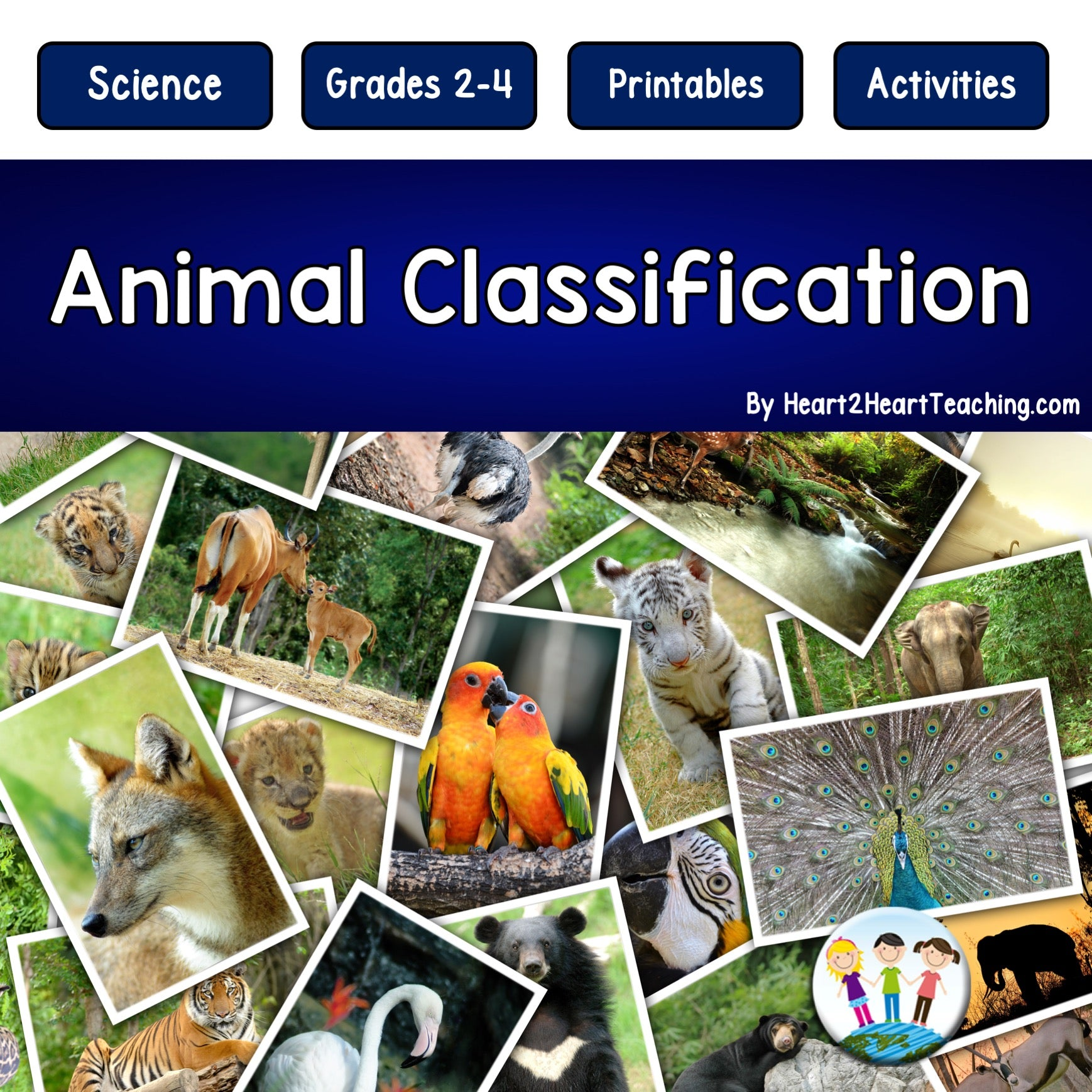 Animal Classification Unit with Mammals, Birds, Fish, Reptiles, and Am –  Heart 2 Heart Teaching