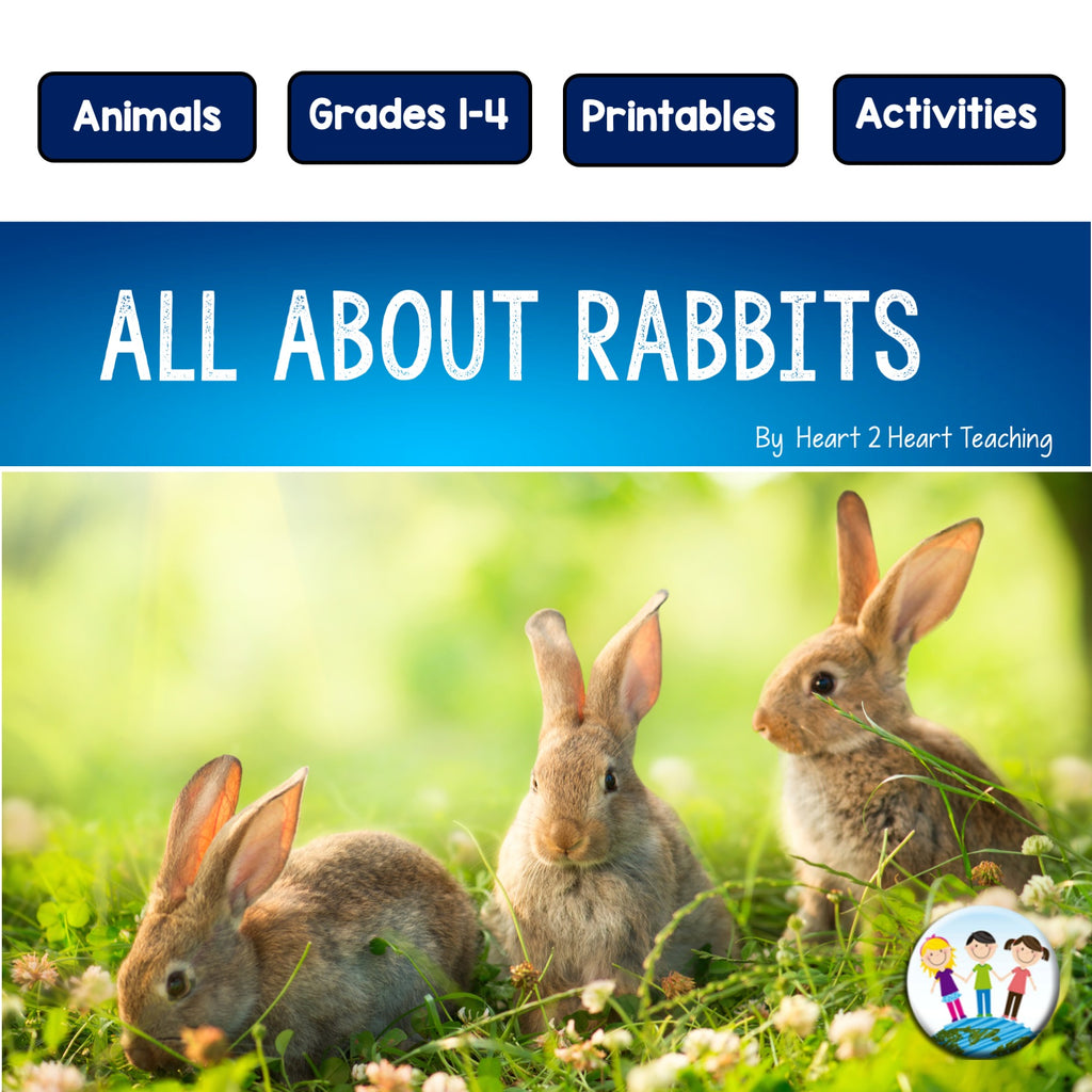 Rabbits Unit with an Easy Easter Bunny Craft Project