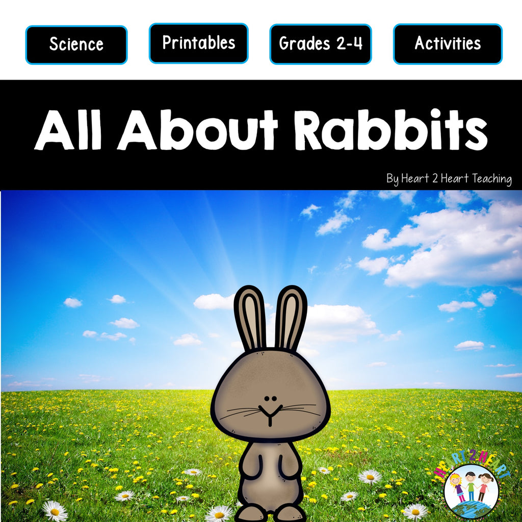 All About Rabbits Unit