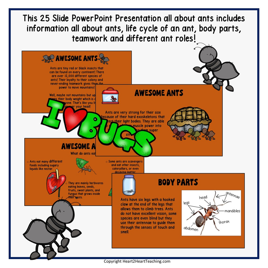 All About Those Amazing Ants Powerpoint