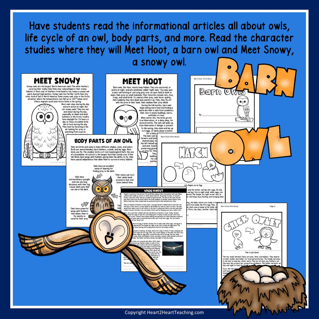 Give A Hoot for Owls: A Non-Fiction Activity Pack