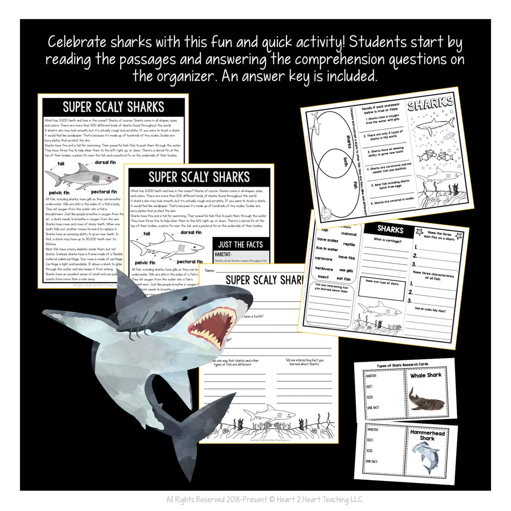 All About Sharks Craft and Activity Pack