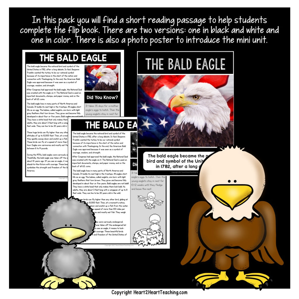 Let's Learn About American Bald Eagles