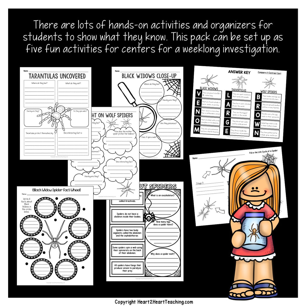 Let's Learn All About Those Creepy Crawly Spiders Activity Pack