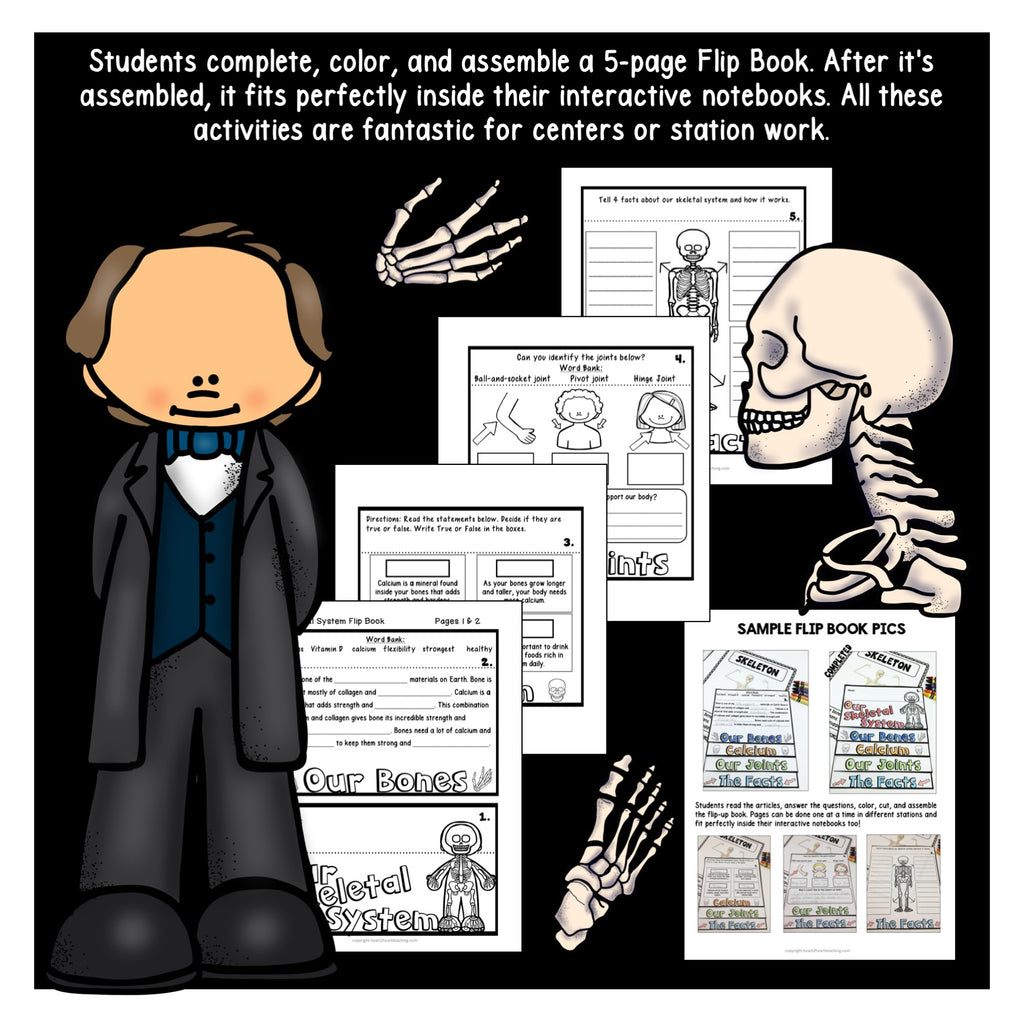 Human Body Systems: Let's Explore Our Skeletal System