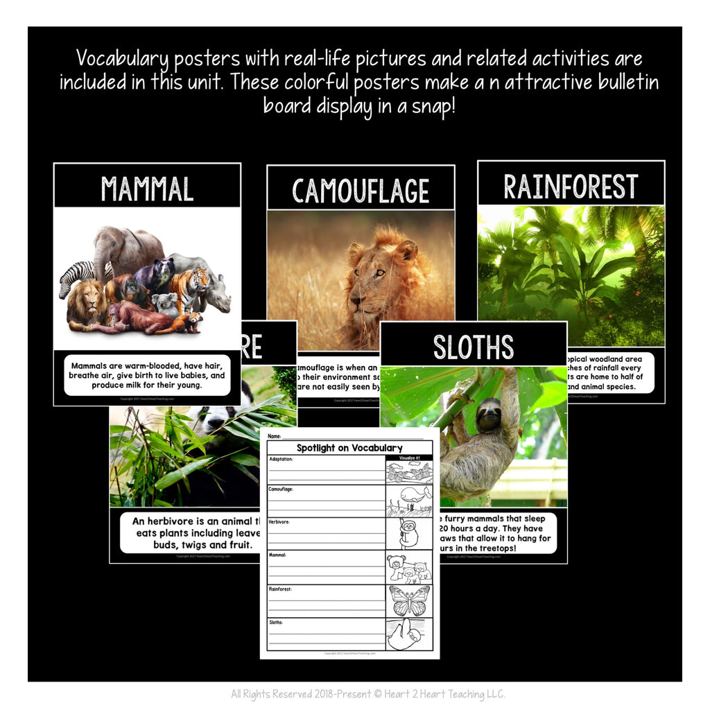 The Slowest Mammals: All About Sloths Activity Pack and Craft